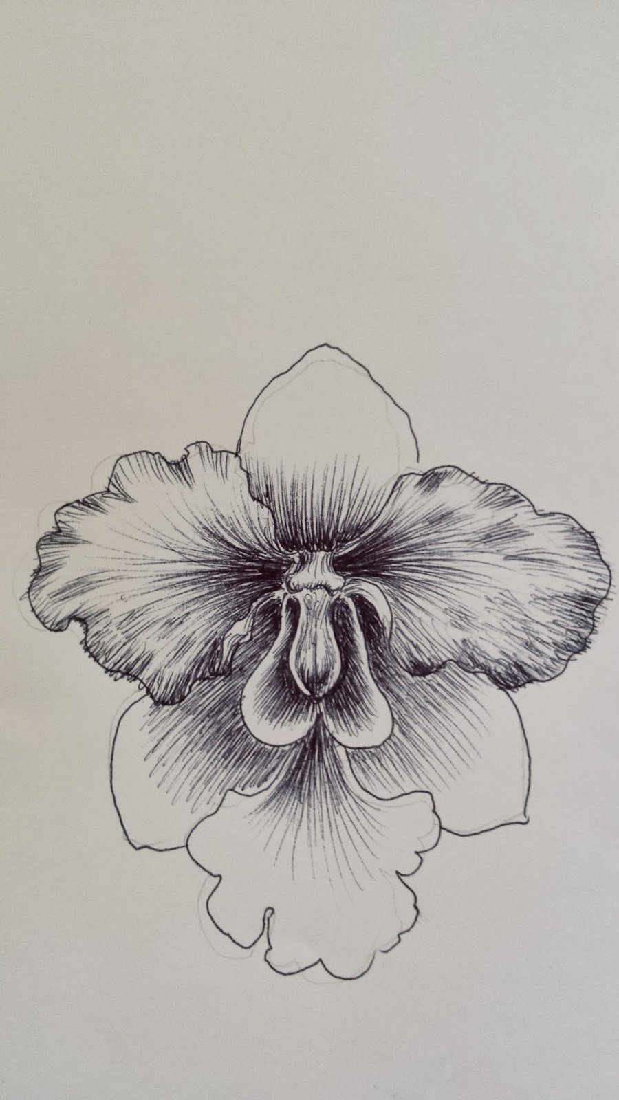 Drawings Of A Flower Best Of Flower Power A Pen Drawing