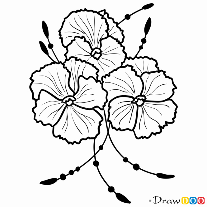 how to draw violets flowers