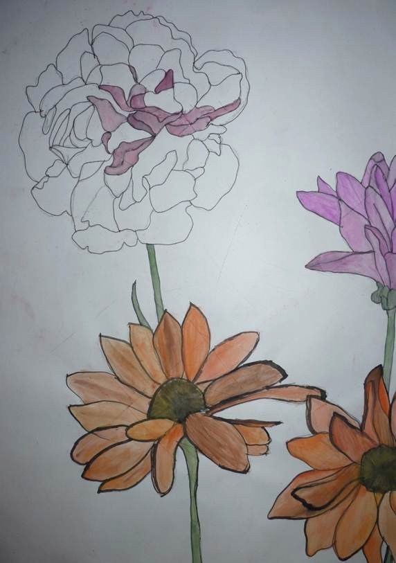 Drawings Of A Flower Lovely Observational Timed Drawings Flowers