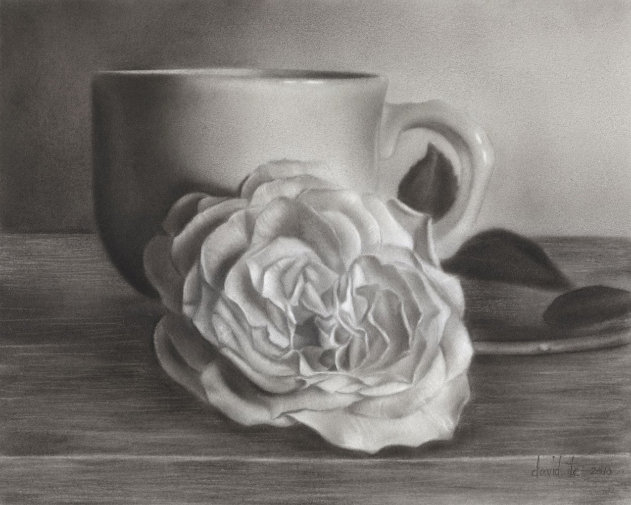 Drawings Of A Flower Unique Cup O Rose 7 5x6 Realistic Flower Charcoal Drawing