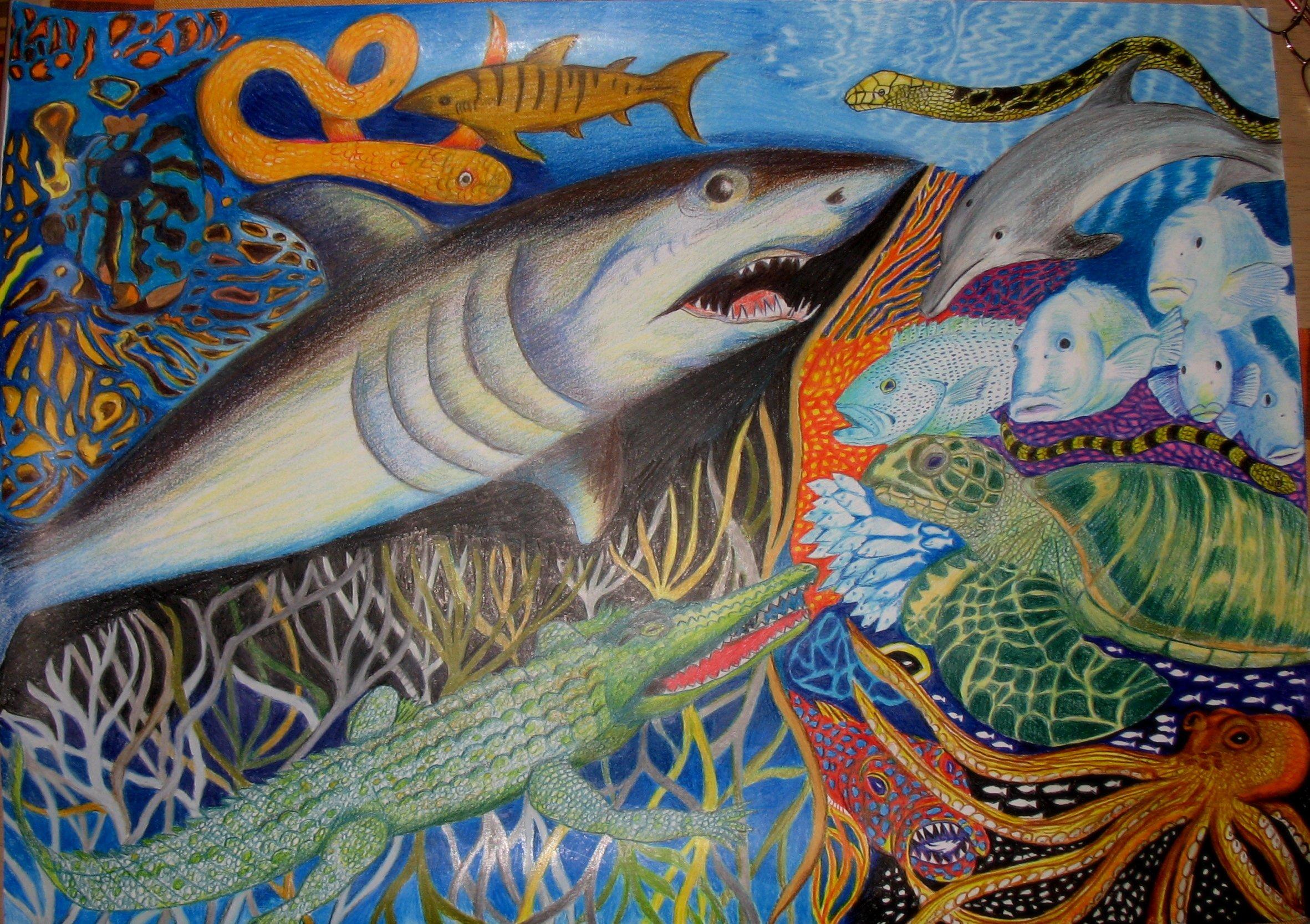 Drawings Of Sea Creatures Fresh Artdoxa Munity for Contemporary Art Rick Hawkins