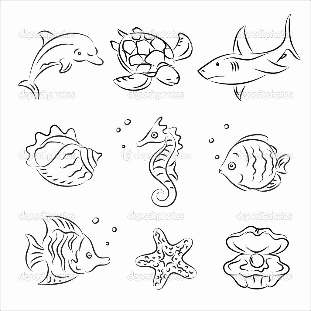 Drawings Of Sea Creatures Inspirational Sea Life Drawing Google Search Drawing Ideas In 2019