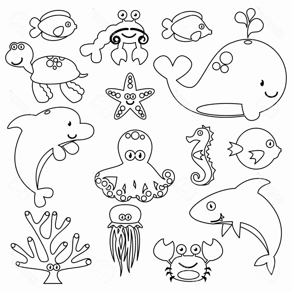 Drawings Of Sea Creatures New Sea Creatures Drawing at Getdrawings