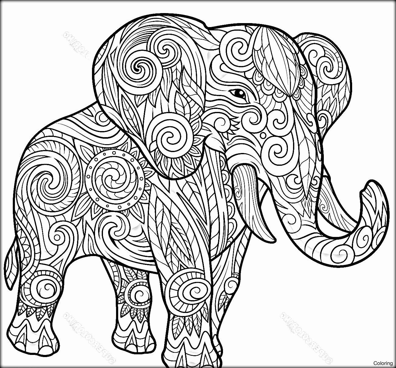 Elephant Mandala Coloring Pages Awesome Elephant Mandala Coloring Pages Collection