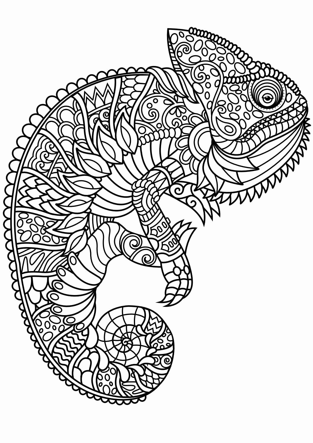 Elephant Mandala Coloring Pages Inspirational 23 Elephant Mandala Coloring Pages Download Coloring Sheets