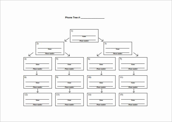 Emergency Phone Tree Template Lovely 11 Printable Phone Tree Templates Doc Excel Pdf