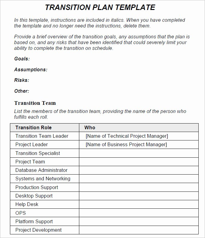 Employee Transition Plan Template Beautiful Transition Plan Template Free Word Excel Pdf Documents Download
