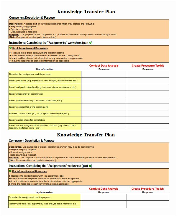 Employee Transition Plan Template Inspirational 8 Transition Plan Templates Word Pdf