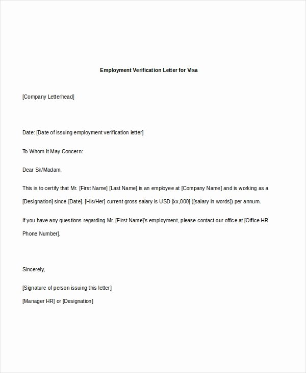 Employment Verification Letter for Immigration Awesome Free 7 Sample Employee Verification Letters In Pdf