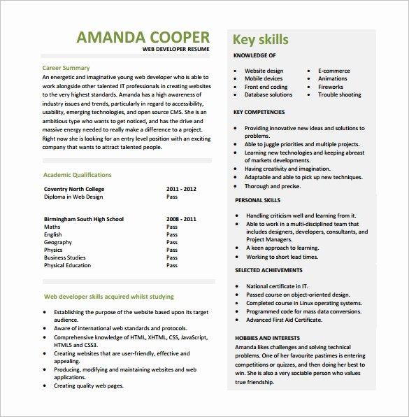 Entry Level Programmer Resume Inspirational 11 Web Developer Resume Templates Doc Pdf