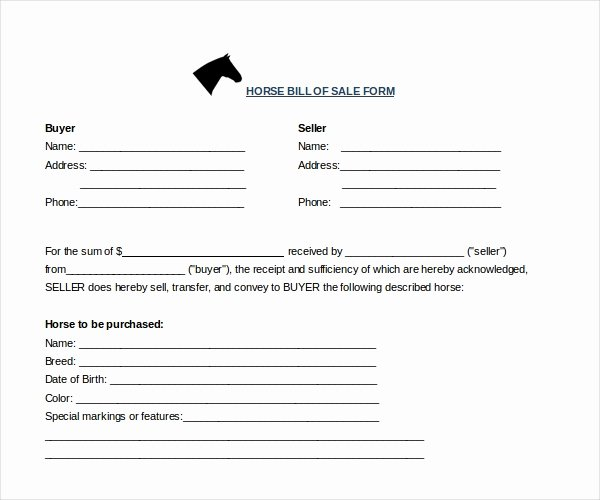 Equine Bill Of Sale Fresh Free 7 Sample Horse Bill Of Sale forms In Pdf