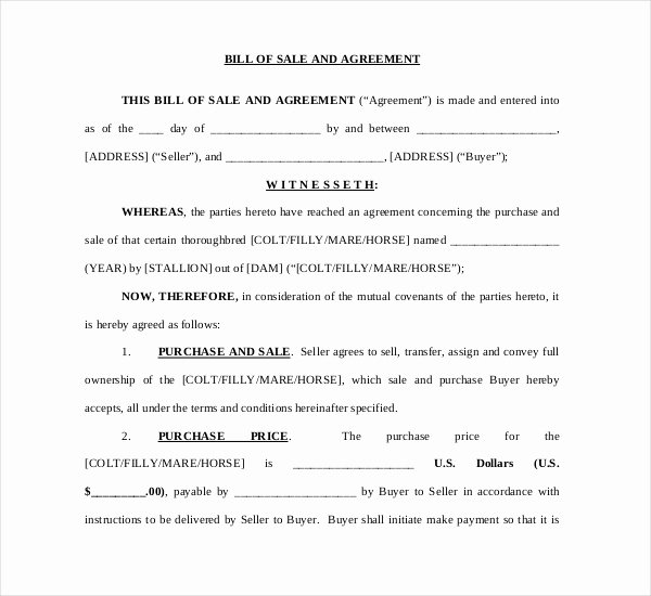 Equine Bill Of Sale Fresh Horse Sale Contract with First Right Of Refusal 11 Things