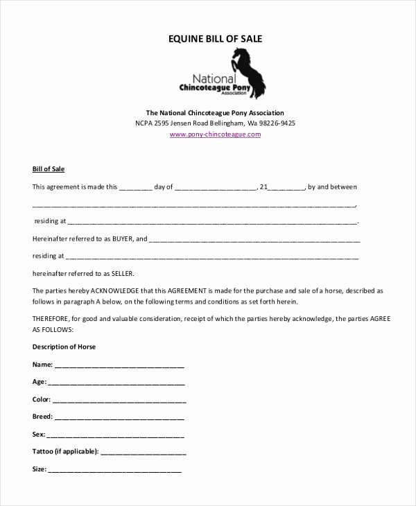 Equine Bill Of Sales Fresh Simple Bill Of Sale form Sample 9 Free Documents In Pdf