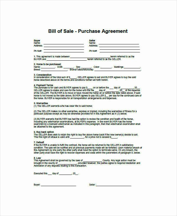 Equine Bill Of Sales Luxury 9 Horse Bill Of Sale Examples In Word Pdf