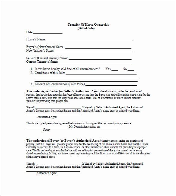 Equine Bill Of Sales Luxury Horse Bill Of Sale – 8 Free Sample Example format Download