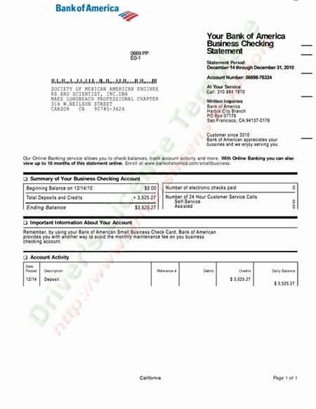 Fake Chase Bank Statement Template Best Of Bank America Check Template