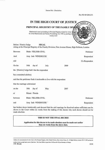 Fake Divorce Certificate Maker Inspirational Printable Sample Divorce Papers form