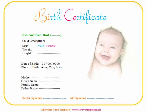 Fake Divorce Certificate Maker Unique Baby Birth Certificate Template