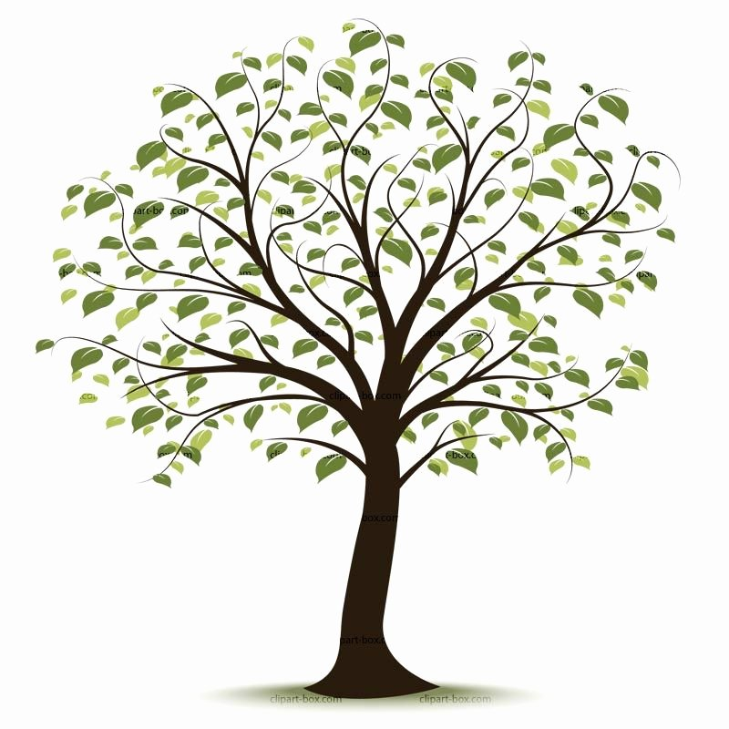 Family Tree Clip Art Templates Fresh Clip Art Family Tree …