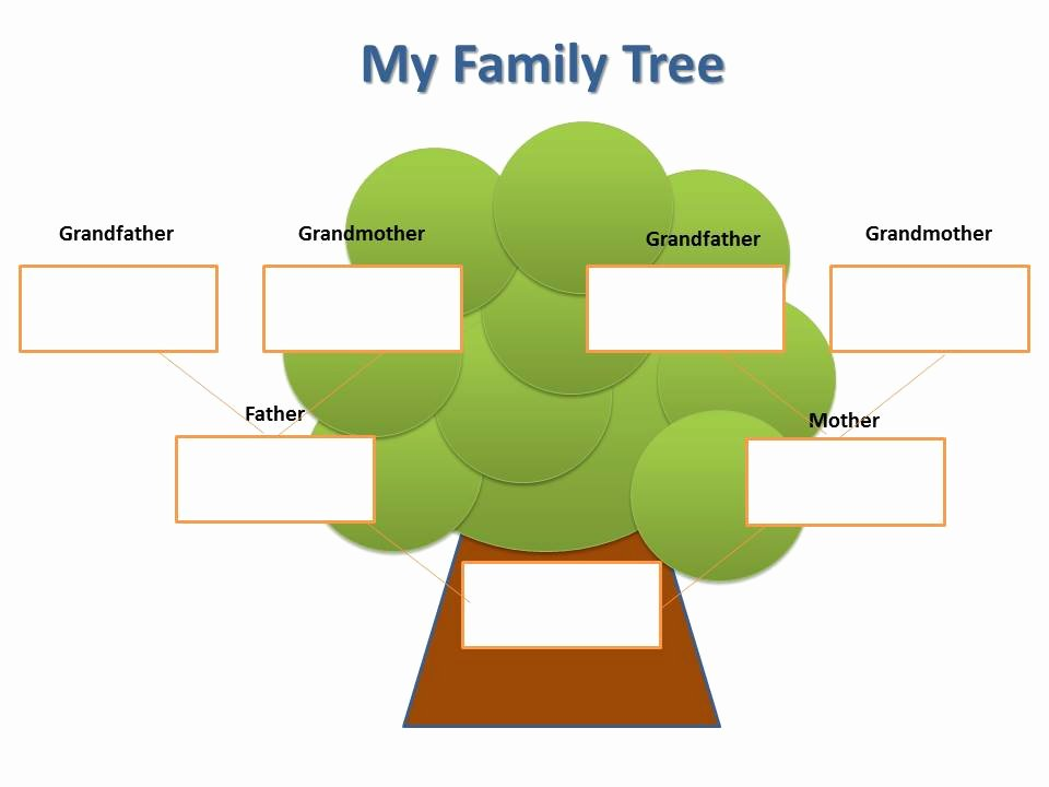 Family Tree Clip Art Templates Unique Family Tree