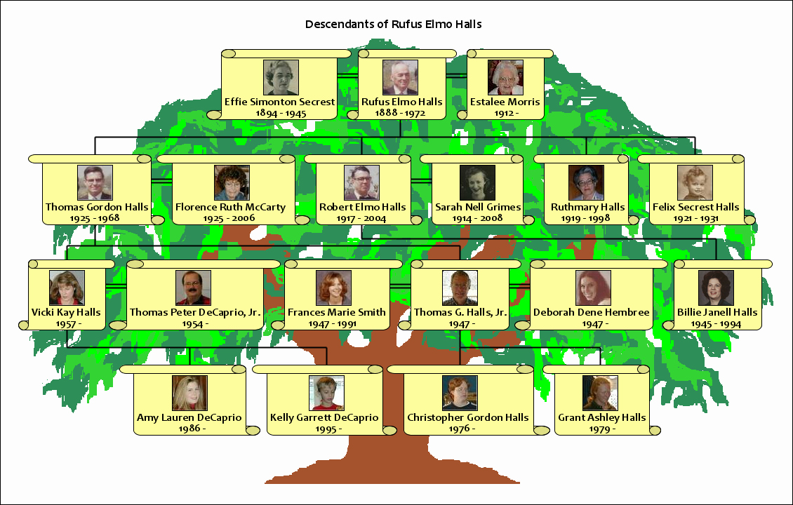Family Tree Examples Images Best Of How to Make A Family Tree Using Your Own Family Information How to Make A Well Illustrated