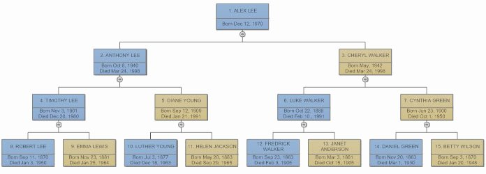 Family Tree Examples Images Elegant Family Tree Everything You Need to Know to Make Family Trees