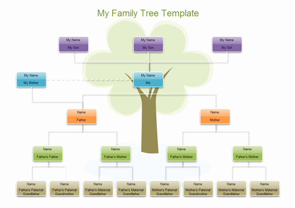 Family Tree Examples Images New Examples Of Family Tree's