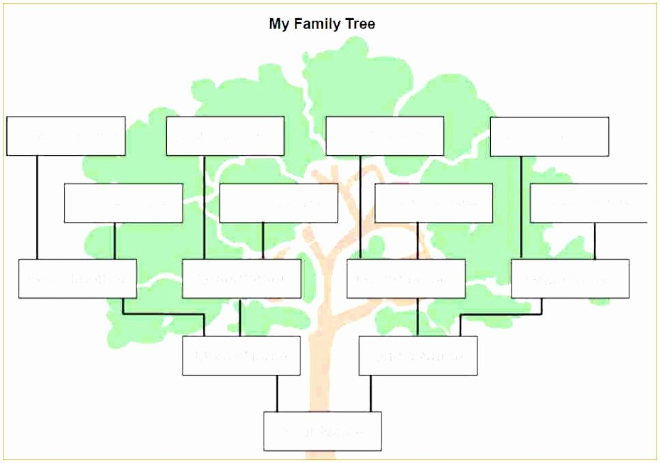Family Tree Microsoft Word Lovely 9 Microsoft Word Family Tree Template Free Uwepa