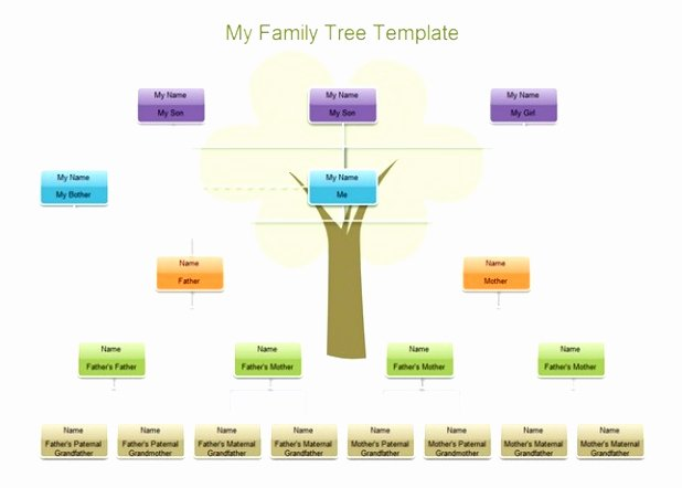 Family Tree Microsoft Word New 9 Microsoft Word Family Tree Template Free Uwepa