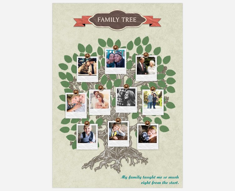 Family Tree Photo Collage Beautiful A Guide On Family Tree Card Making