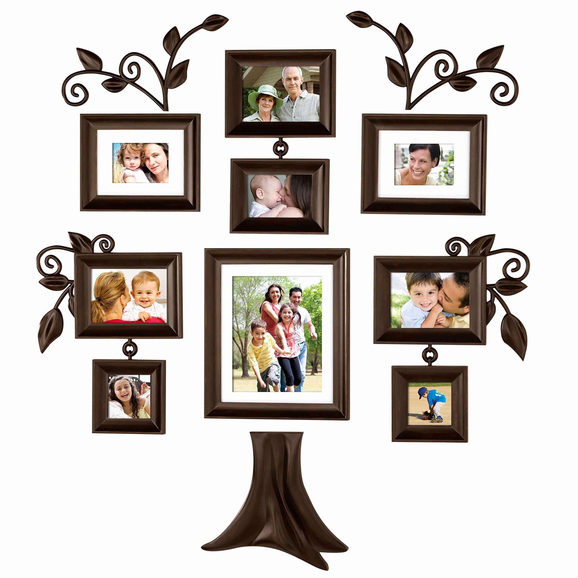 Family Tree Photo Collage Lovely Wallverbs™ Family Tree 9 Piece Family Tree Collection Genealogy Pinterest