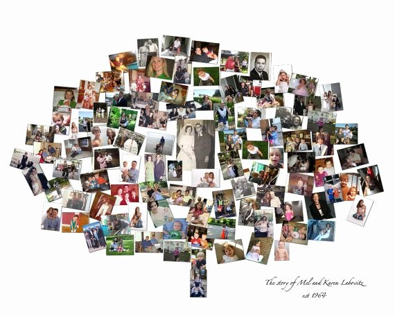 Family Tree Photo Collage New Family Tree Custom Canvas Mosaic Collage Picture Gift Wedding or Anni…