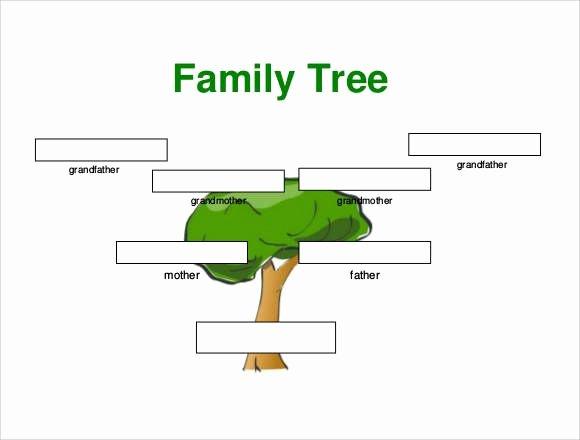 Family Tree Template Google Docs Luxury Small Family Tree Template