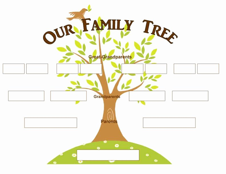 Family Tree Worksheet Pdf New New 517 Printable Family Tree Pdf