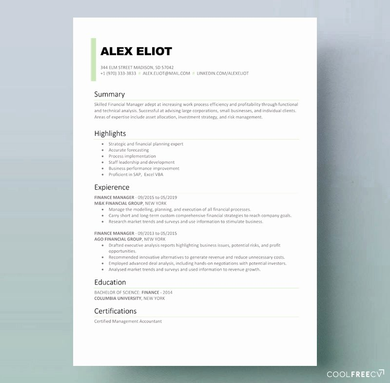 Finance Resume Template Word New Resume Templates Examples Free Word Doc