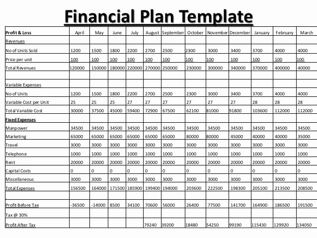 Financial Advisor Business Plan Best Of Business Plan Financial Plan Business Plan