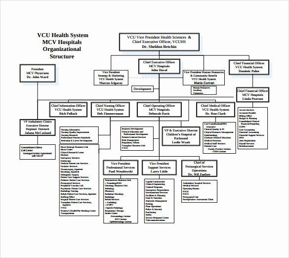 Fire Department organizational Chart Template Best Of 9 Hospital organizational Chart Templates to Download