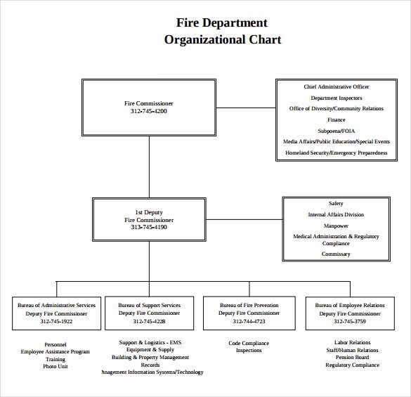 Fire Department organizational Chart Template Luxury Sample Fire Department organizational Chart 12 Documents In Pdf