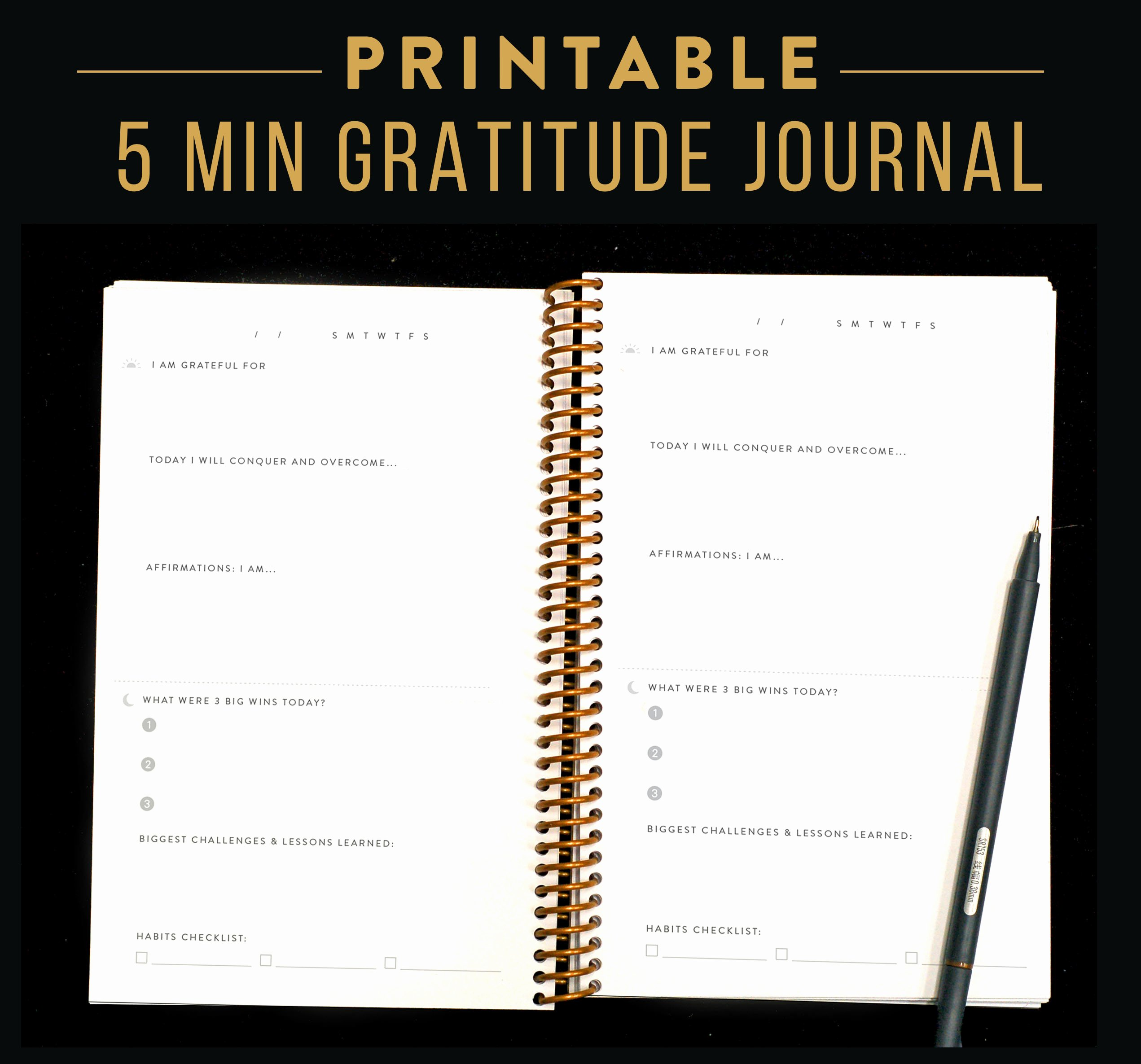 Five Minute Journal Template Unique Printable Gratitude Journal Daily Take Five Minutes