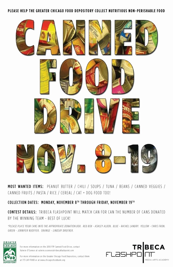 Food Drive Flyer Template Elegant 8 Best Images About Food Drive On Pinterest