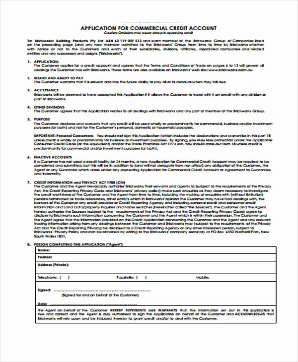 Ford Credit Application Pdf Unique Free 31 Credit Application forms