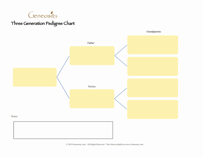Four Generation Pedigree Chart Fresh Three Generation Pedigree Chart Four Generation