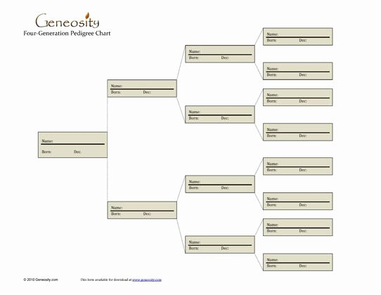 Four Generation Pedigree Chart Luxury 23 Best Family Tree Images On Pinterest