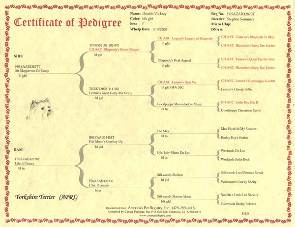 Four Generation Pedigree Chart Luxury Canine Pedigree Inc