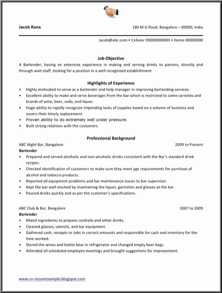 Free Bartender Resume Templates Unique Download Bartender Resume Template for Free Tidytemplates