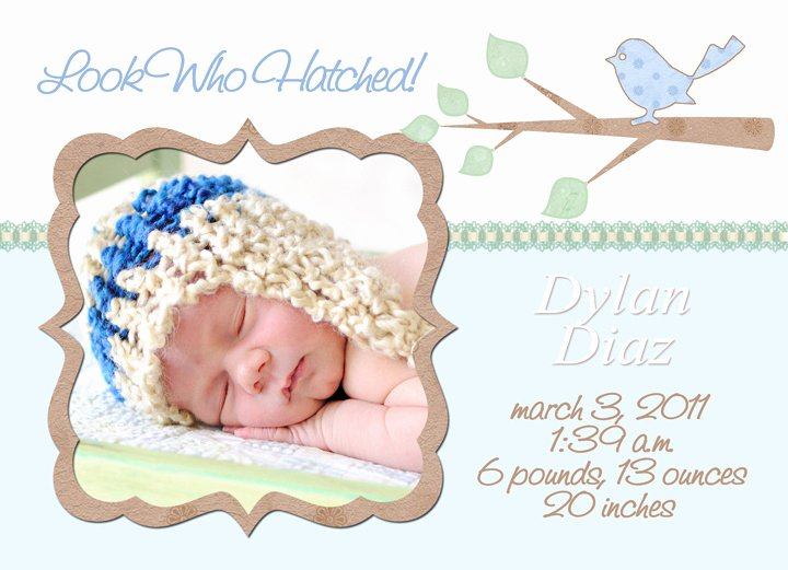 Free Birth Announcement Template Elegant Mick Luvin Photography