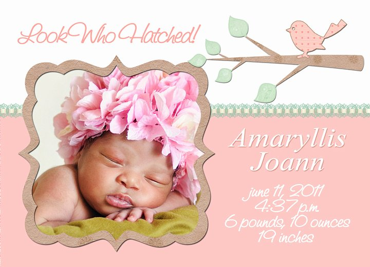 Free Birth Announcements Templates Elegant Mick Luvin Photography
