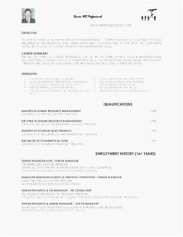 Free Capability Statement Template Word Beautiful Free 59 Capability Statement Template Word Professional