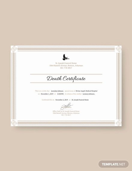 Free Death Certificate Template Awesome Free Professional Project Management Certificate Template Download 200 Certificates In Psd