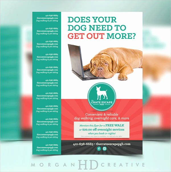 Free Dog Walking Flyer Template Beautiful 15 Dog Walking Flyer Templates Psd Vector Eps Ai format Download